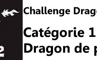 Challenge Dragon 2012