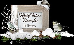 Défi Mia - bilan novembre
