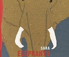 Mercredis de l'album #7 : Sara
