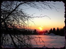 soleil hiver - bonus