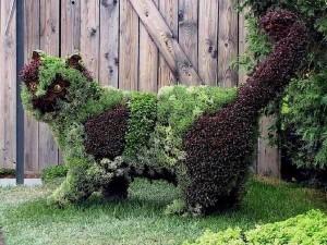 jardin-enchanté.com