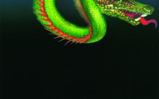 Le Baume du dragon de Silvana Gandolfi