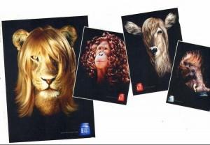 monsieur lion chez le coiffeur - bonus