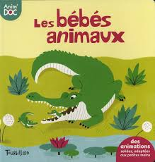 bebes animaux tourbillon