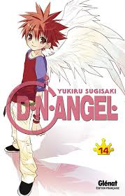 dn angel 14