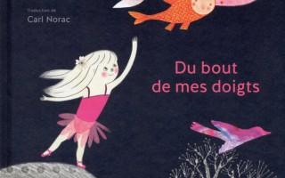 Bilan Bookineurs en couleurs - PAL Noire 2014