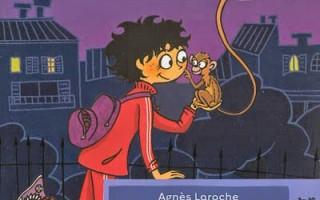 Rue des petits singes d'Agnès Laroche