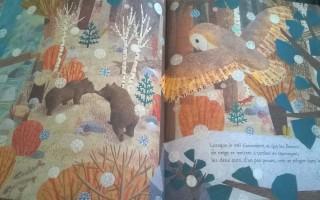 Les Quatre saisons d'un ours de McEwen