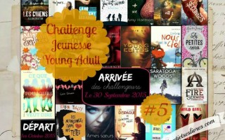 Challenge Young Adult 5