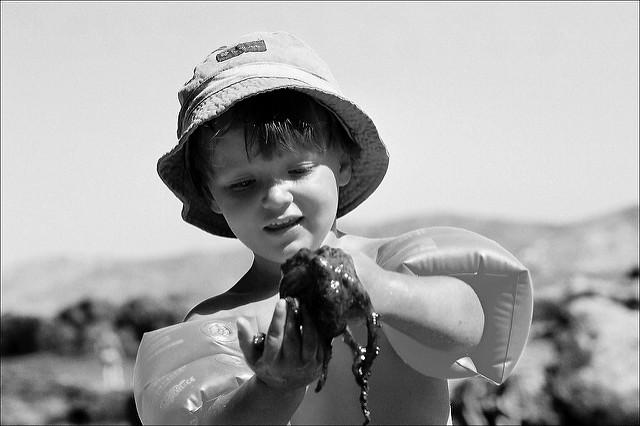Caresse de poulpe by Bachellier Christian via Flickr