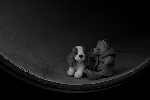 Vagabundos by Contando Estrelas via Flickr