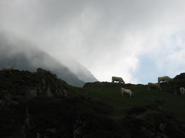 Pyrénées by Rémi Colnot via Flickr