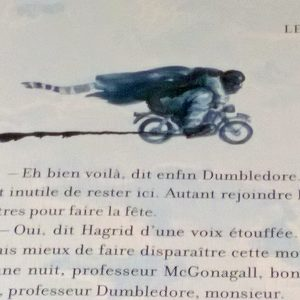 harry potter ecole des sorciers illustre (1)