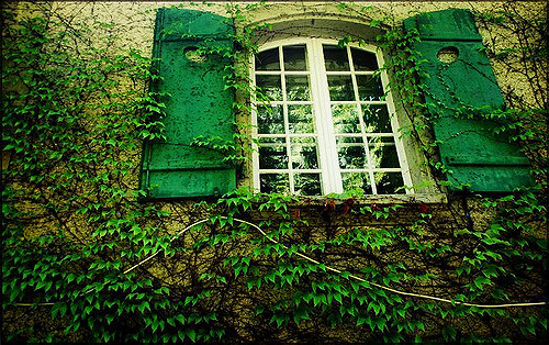 Vertes by Ubz via Flickr