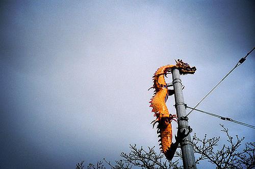 dragon  by Daniel Lugo